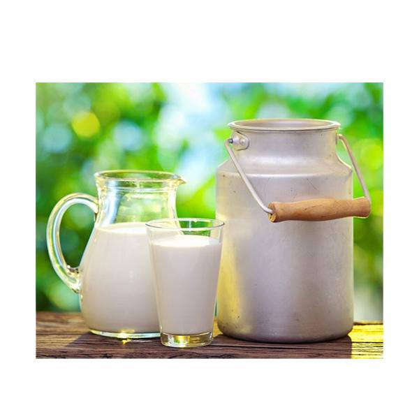 شیر گاو محلی تازه فله (1 کیلوگرم)